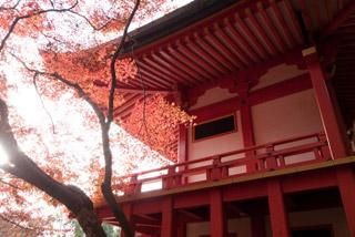 285 醍醐寺 秋の散策