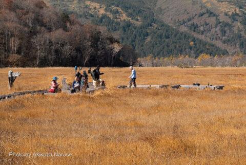 尾瀬ヶ原:東電小屋への分岐でくつろぐハイカー。山ノ鼻から牛首を経てここまで約4.5Km午前9時頃。