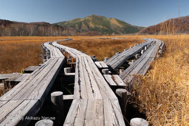 尾瀬ヶ原:見晴から至仏山を望む、ここから来た道を先ほどの東電小屋分岐点まで戻る。