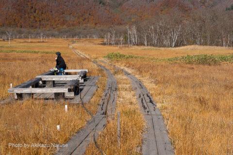 尾瀬ヶ原:東電小屋分岐から約1時間かけて見晴を往復午前10時頃、この木道で尾瀬ヶ原を横断、ヨッピ吊り橋へ向かう。