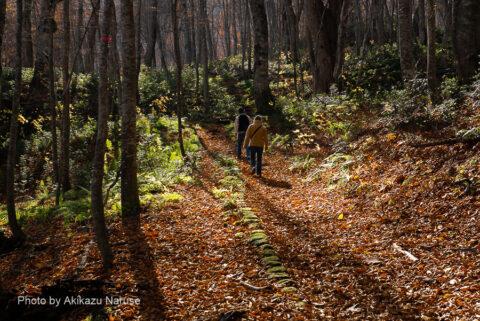 蔦の森:蔦の森散策路で初めてすれ違った人たち。