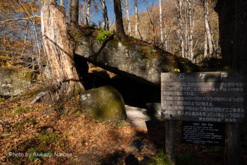 """奥入瀬渓流:「石ケ戸(いしげど)」、この辺りの方言で""""石の小屋""""とか、カツラの木に支えられている。ここから渓流の散策が始まる。"""