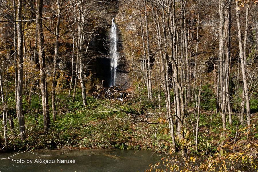 奥入瀬渓流:雲井の滝から数分歩くと対岸に「白布の滝」が現れる、この時期は木々の枝に遮られずによく見える。