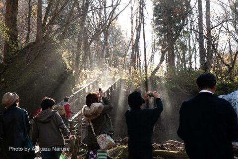 奥入瀬渓流:渓流散策のハイライト銚子大滝、轟音と共に舞い上がる。