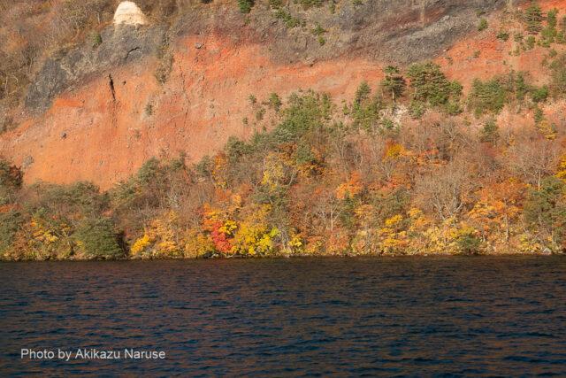 十和田湖:赤く荒々しい断崖(五色岩)。