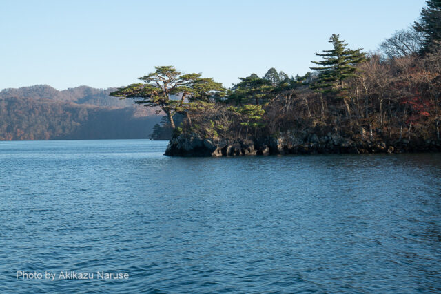 十和田湖:船内放送で見返りの松と言っていたような。航行する船から見返ってのショット。