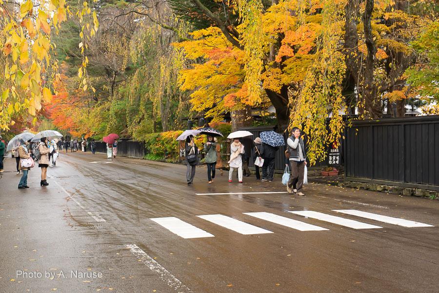武家屋敷通り:春は見事なしだれ桜が咲き並ぶ武家屋敷通り、みちのくの小京都にふさわしい風情。この日はくもり秋雨でしっとりとした良い雰囲気だった。