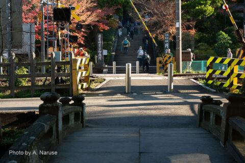 円覚寺:JR横須賀線が参道を横切っている。電車から降りた参拝客が三々五々総門への石段をのぼる。