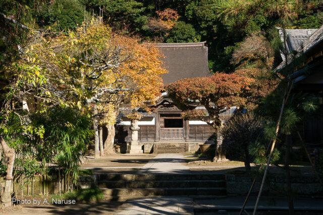 円覚寺:「舎利殿」、中国から伝わる様式で国宝に指定されている。