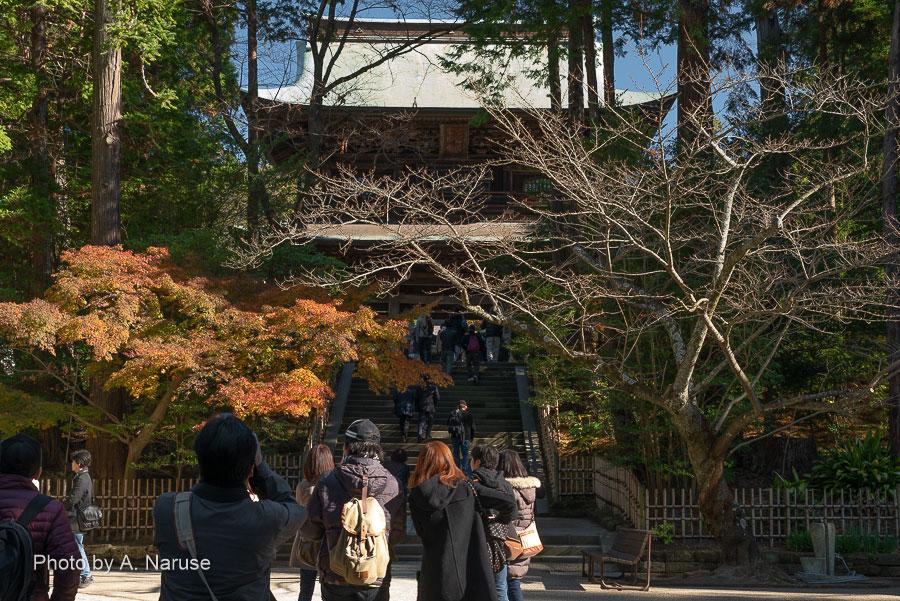 円覚寺:散策開始の頃は静かだった三門もかなり賑わってきた。