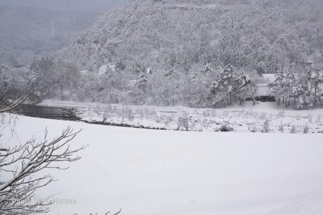 白川郷:途中庄川を見下ろしながら次の撮影スポット「三連合掌」へ向かう。