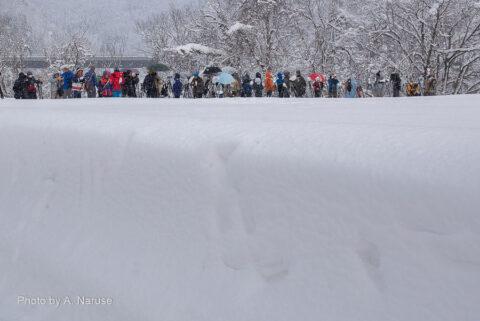 白川郷:明善寺から600mほど歩くと、三脚と人の列が、三連合掌の撮影スポットだ。