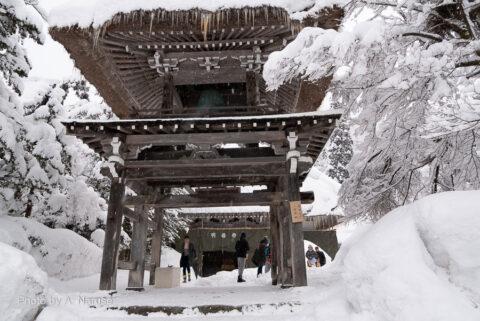 白川郷:明善寺「鐘楼門」県の重要文化財指定。屋根が藁葺きで合掌屋根、他に類を見ないと思う。