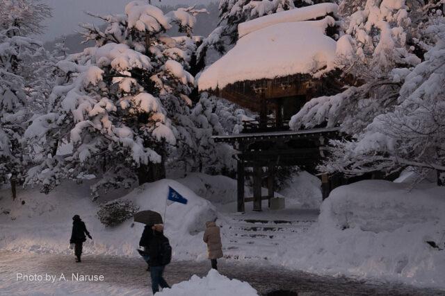 白川郷:明善寺鐘楼門、ライトアップで更に良い雰囲気になってきた。