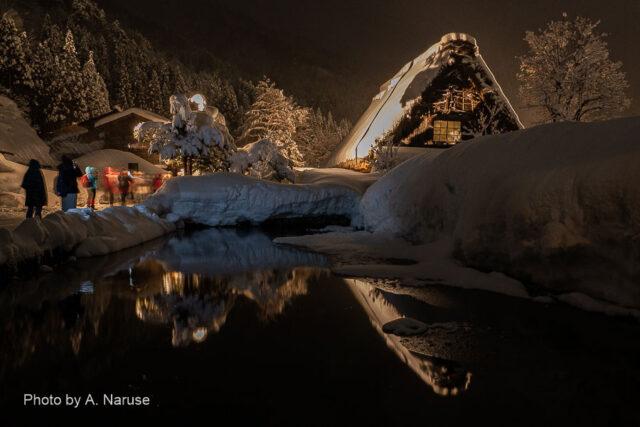 白川郷:ライトアップの合掌集落内を散策する観光客の多くは外国人だった。