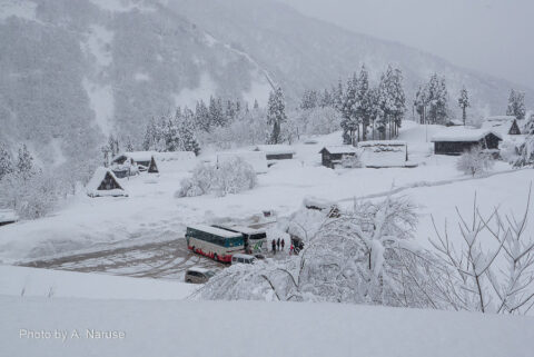 相倉集落:展望所への途中から見る駐車場と集落の一部。この日は2-3mほどの積雪だった。
