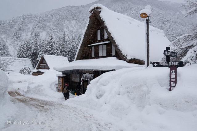 菅沼集落:菅沼バスターミナルから150m下り集落入り口へ、相倉集落同様2-3mの積雪。