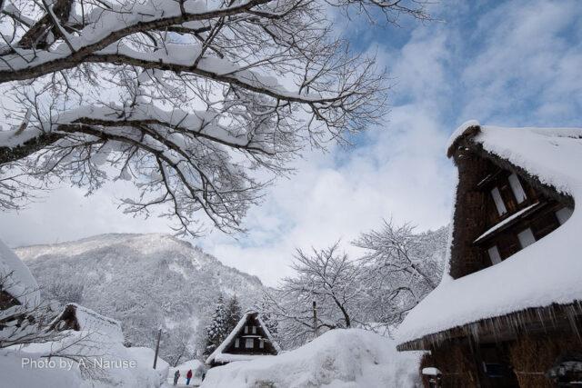 菅沼集落:集落内散策も終わりに近づいた頃青空が見えてきた。