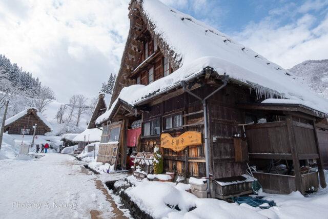 菅沼集落:観光客もまばらで閑散として静かな集落内。
